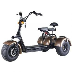 trik_scooter_citycoco_1-800x800